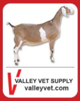 Vet Valley Supply